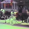 Video Archive Clip 1990 (Jun) - Yaden, Dan & Julie (age 36) - Visit to Old Spring, Texas - Matthew (age 8), Jacob (age 5), Steven (age 2) - Mixed Relations Series - Edited in July 1990 (4 min 53 sec)